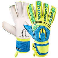 Вратарские перчатки HO Soccer SSG IKARUS