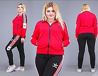 Женский  костюм спортивный Адидас, с 48-54 размер, фото 1