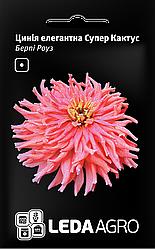 Семена Циния елегантная Супер Кактус, Берли Роуз 0,3г LEDAAGRO