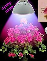 Светодиодная фито-лампа для растений Е27 15Вт