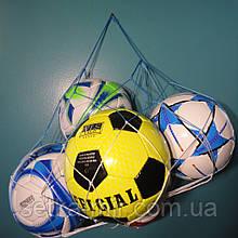 "Сетка для переноски мячей ""ЭКОНОМ"", на 5 мячей, шнур Д - 2,5 мм бело-синяя"
