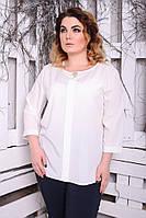 Блуза Лиза однотон