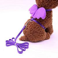 Шлейка + поводок для кошек «Ангелочек», фиолетовый