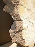 Слэб клён,кап, фото 4