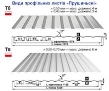 Профнастил Т-6 Blachy Pruszynski 0,5 мм PE RAL 8017
