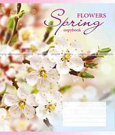 """Зошити учнівські """"Весна"""" 18 аркушів, лінія, малюнки в асортименті"""