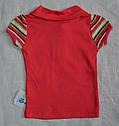 Детская футболка-поло Утята р. 74 см, 80 см (Nicol, Польша), фото 4