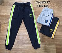 Спортивные штаны для мальчика оптом, Mr.David, 116-146 см,  № CSQ-52217, фото 1