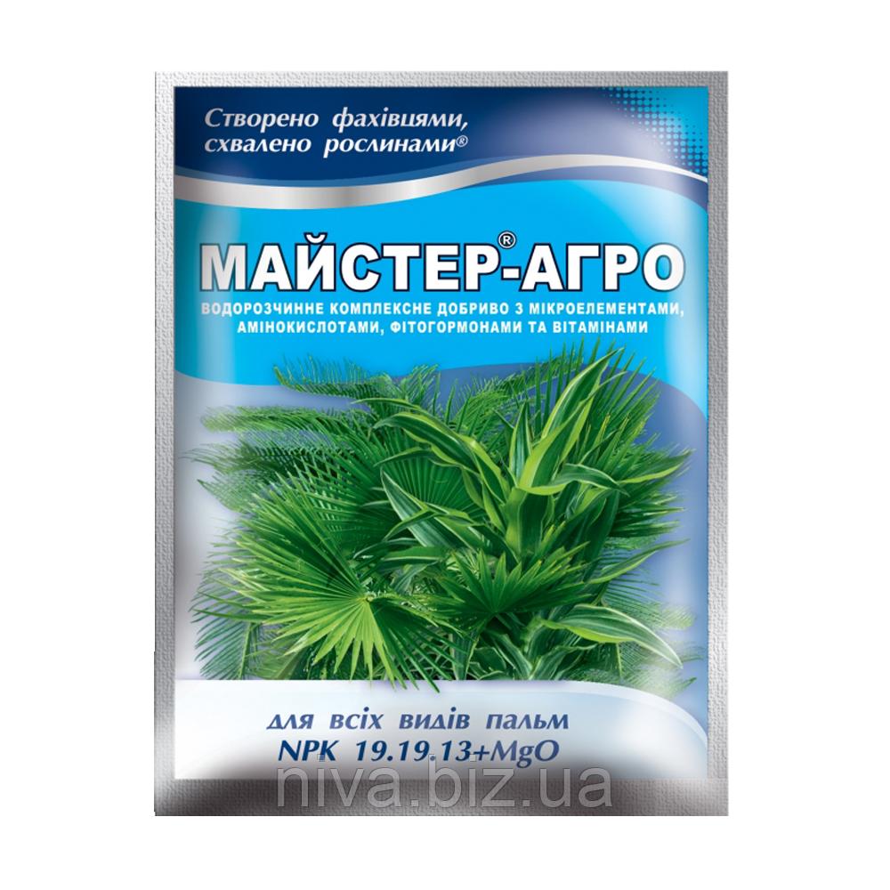 Майстер Агро для хвойних рослин Україна 25 г