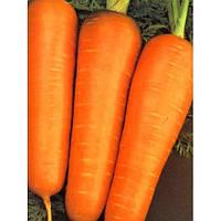 Семена моркови Амстердамская на вес