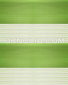 Тканевые ролеты День Ночь DN 207 зеленый, 50*170 см
