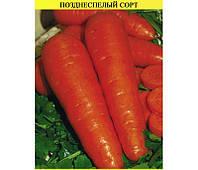 Семена моркови Регульская на вес