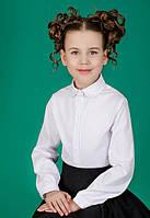 Блуза школьная для девочки 3544