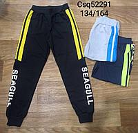 Спортивные брюки для мальчиков оптом, Seagull, 134-164 рр