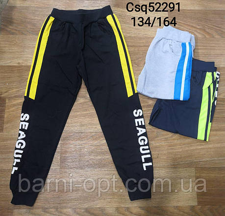 Спортивные брюки для мальчиков оптом, Seagull, 134-164 рр, фото 2