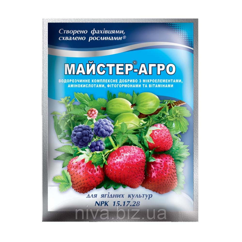 Майстер Агро добриво для ягід Україна 100 г