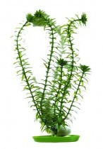 Растение пластиковое  Hagen Marina Anacharis (Анахарис) 20см
