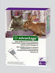 АДВАНТЕЙДЖ 80-капли от блох для котов и грызунов весом до 8кг