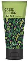 Лосьон для лица Esfolio Green Cactus Fresh Lotion с экстрактом  зеленого кактуса