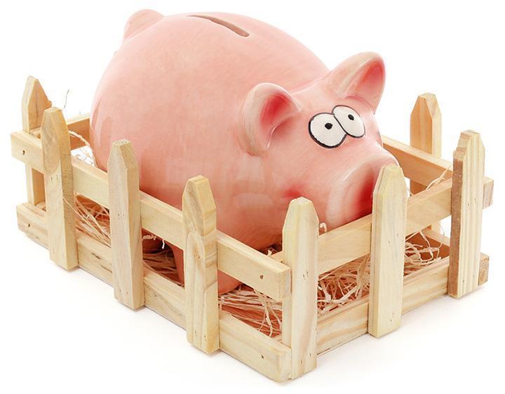 Статуэтка-копилка Bona Веселая свинка с оградой керамическая (psg_BD-971-721)