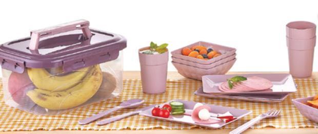 Набор для пикника Qlux на 4 персоны 25 предметов в контейнере (psg_UK-L-00605)