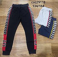 Спортивные брюки для мальчиков Seagull, 134-164 рр.