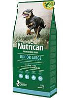 Nutrican Junior Large (Нутрикан) для щенков крупных пород, курица, 15кг