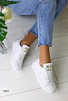 Женские кожаные белые кеды