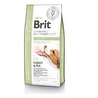 Ветеринарна дієта Brit VD Grain free Diabetes. Беззерновая дієта при діабеті, 12кг.