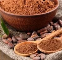 Какао порошок алкализированный Нидерланды 10-12%