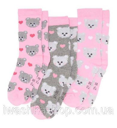 Стильные носки с мишками комплектом на девочек р. 35 - 38, X-MAIL / KIK