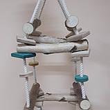 Игрушка для попугая объемная лесенка, фото 3