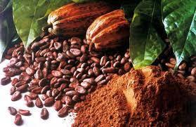 Какао порошок натуральный Малайзия 10-12%