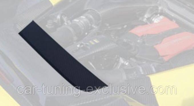 MANSORY engine logo section for Ferrari 488 GTB / Spider