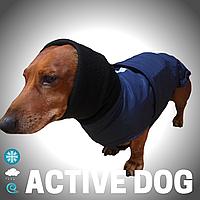 Одежда водонепроницаемая для собак, для такс Попона Active dog , цвет Синий