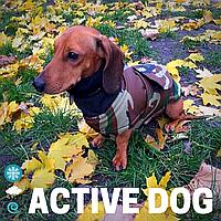 Теплая Одежда для собак, водонепроницаемая попона для такс, Active Dog цвет камуфляж