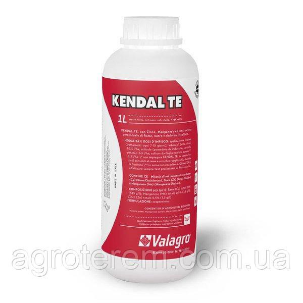 Кендал ТЕ (1 л) Kendal