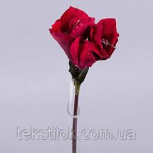 Амариллис бархатный красный  Новогодний декор