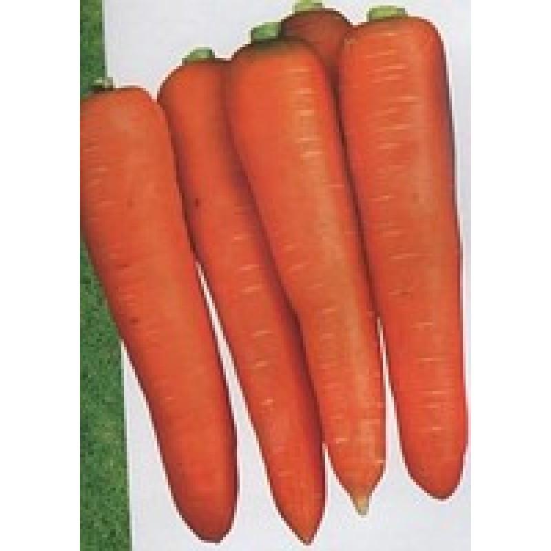 Семена моркови Йорк F1, Lark Seeds (1,8 - 2,0) | профессиональные