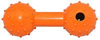 Іграшка резинова Гантель пищалка з шипами, з отвором для лакомств 12см ER065  ZooMax