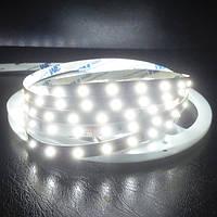 LED лента BIOM G.2 SMD2835-60 12V IP20 Премиум Х-БЕЛАЯ