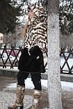 Мод 28. Шубка для девочки из меха кролика и овчины, капюшон съемный. Доставка по Украине., фото 5