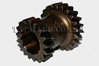 Шестерня сдвоенная 2/3 передачи (промежуточный вал)(613EII,EIII) TATA Motors 250526305402