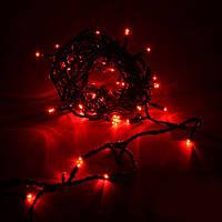 Гирлянда Нить (STRING) красная 10 метров (черный кабель Каучук)