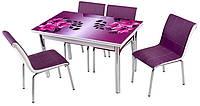 Стол раздвижной обеденный 1011 Fusya orkide 186,набор, кухонный стол и 4 стула.