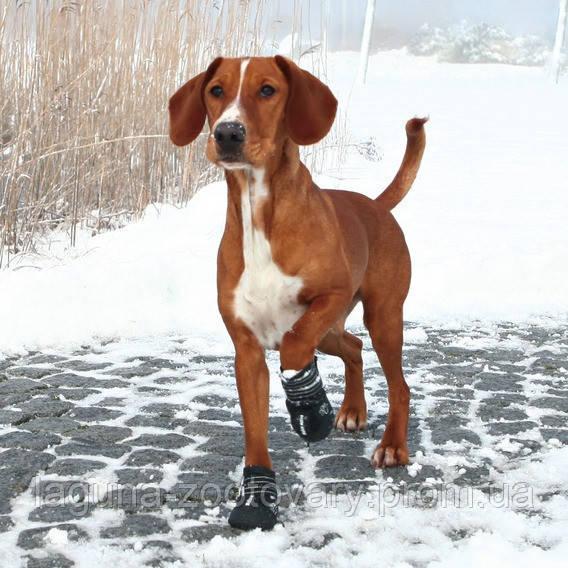 Защитная обувь для собак АКТИВ, размер М - L/2шт