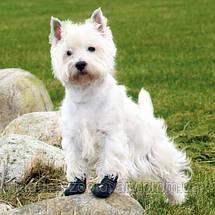 Защитная обувь для собак АКТИВ, размер М - L/2шт, фото 2