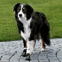 Защитная обувь для собак АКТИВ, размер М - L/2шт, фото 3