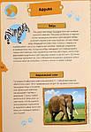 Животные планеты. Интерактивная детская энциклопедия с магнитами (в коробке), фото 4