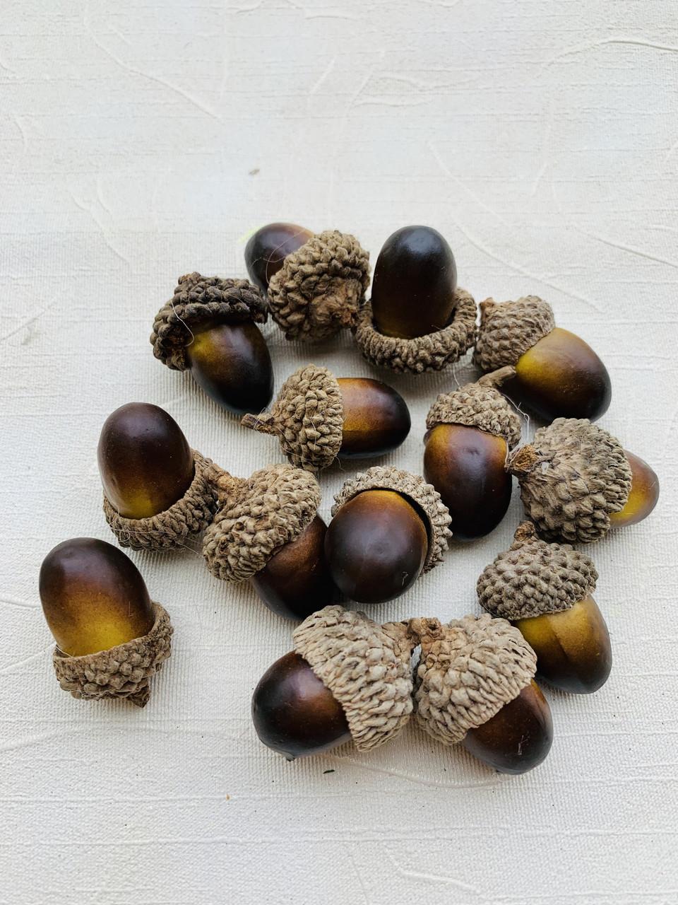 Штучні жолуді.Жолуді декоративні(3 см)
